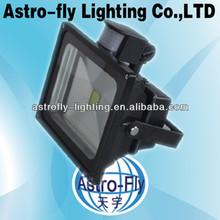 warm/normal/cold white optional COB light source cost-effect sensor flood light