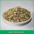 verde sementes de funcho
