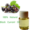 GMP Manufacturer Black Currant Seed Oil Reduces the effects of arthritis
