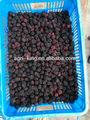 Mûres sauvages congelés/noms tous les fruits vente chaude