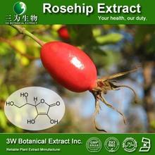 GMP Factory sale Rosehip extract ,Rosehip extract Vit C 1%,Ntuaral Vitamin C