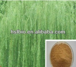 15% 25% 50% 98% salicin/White willow extract