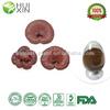 reishi mushroom extract Triterpenoids 1%