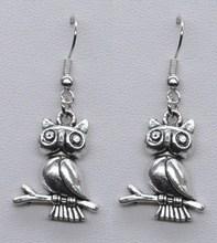 Fashion wholesale silver owl drop earring jewelry summer 2014