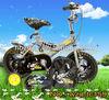 mini gas dirt bikes for sale