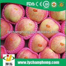 Factory directly supply high quality fresh Yantai Fuji apple