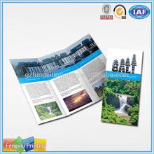 Professional Menu Brochure Printing services