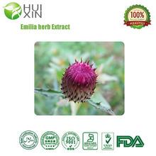 Emilia herb Extract medicinal plant