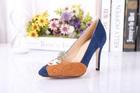 Famous brand high heel shoes beautiflu lady shoes dress shoes