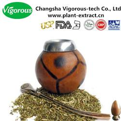 yerba mate extract/yerba mate extract powder/yerba mate tea