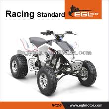 600CC QUAD BIKE,600CC ATV BIKE,600CC Racer