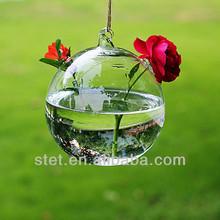2014 fashionable decorative glass vase plant water flower plant