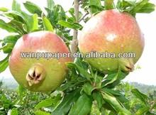 pomegranate bag manufacturer