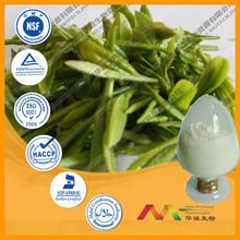 High Quality Bio Green Tea Extract