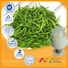 Best Quality Organic Green Tea Extract