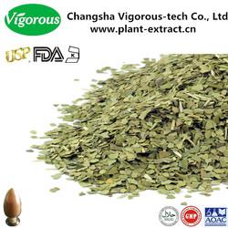 100% Natural Yerba Mate Extract/Yerba Mate Extract powder/yerba mate