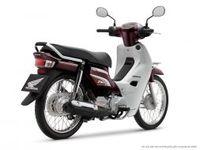 Motorcycle (Super Dream 110cc)
