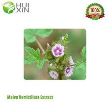 Malva Verticillata Extract GMP & KOSHER certificate Malva Verticillata P.E./cluster mallow fruit extract/Chingma Abutilon Seed E