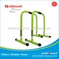 Lebert ecualizador verde lima | de la aptitud | ejercicio | Crossfit | Dip Station