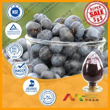 GMP Supplier Anthocyanidins Series bilberry supplement