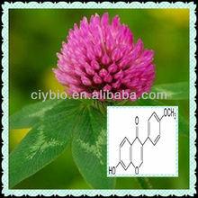 Trifolium Pratense Extract/Red Clover P.E/Formononetin