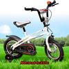 1000w electric bike motor