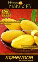 Pakistani Mango (Sindhri)