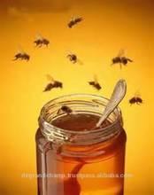 Saharan honey