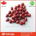 beta caroteno 3000iu vitamina softgel capsule