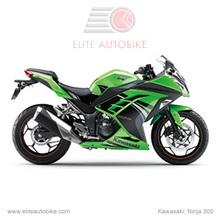 Kawasaki Ninja 300-2 Green