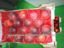PP Insert Tray for Round Fruit,blue,PP,trays,29*49cm