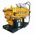 Estados unidos 200kw-2000kw googol la naturaleza del motor de gas