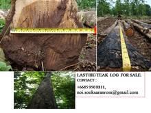 Teakwood Timber