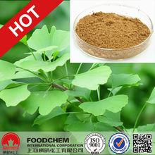 100% Natural Ginkgo Biloba Extract