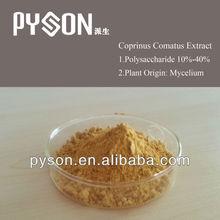 Top coprinus comatus extract / coprinus comatus powder / Chicken Leg Mushroom Extract Polysaccharides 10%-40%