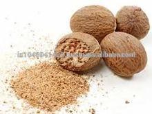 Best Exporter 100% Pure Nutmeg Oil