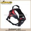 Super quality professional horse harness flashing