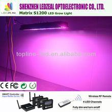 China manufacturer new product full spetrum 800W quad band led grow light