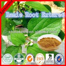 Radix Boehmeriae Extract/ Ramie Root Extarct 10:1/Boehmeria niveaGaud Extract