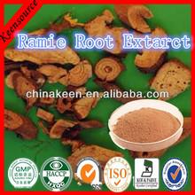 Boehmeria niveaGaud Extract/Radix Boehmeriae Extract/ Ramie Root Extarct