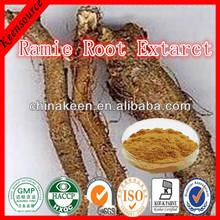 Ramie Root Extarct /Radix Boehmeriae Extract/ Ramie Root Radix Boehmeriae Extract