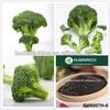 Huminrich Shenyang Liquid And Powder Organic Fertilizer Humic Acid Fulvic Acid From Natural Leonardite