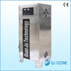 80g/h water treatment ozone machine with oxygen concentration