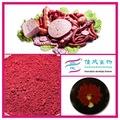 الأصلي الألوان الطبيعية للأغذية