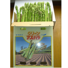 Fresh Morning Picked Green Asparagus ( M & L Mixed Size) 2kg