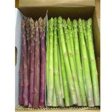 Fresh Morning Picked Green Asparagus 1kg + Purple Asparagus 500g
