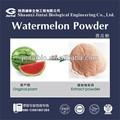 solúvel em água em pó de suco de melancia suco concentrado