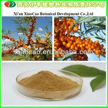 Manufacturer Supply 100% Natural Seabuckthorn Flavonoid/Seabuckthorn Fruit Powder