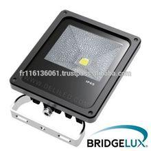 Led Flood Light PROJECTEUR LED PRO 20W - COB BRIDGELUX - cold white