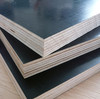 film faced plywood with brand name from Shandong plywood factory